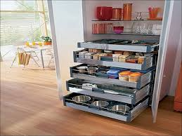 Kitchen Cabinet Organizer Ideas 100 Organizing Kitchen Cabinets Ideas 65 Ingenious Kitchen