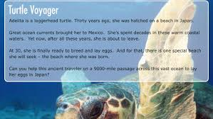 voyage of the lonely turtle turtle voyager game nature pbs