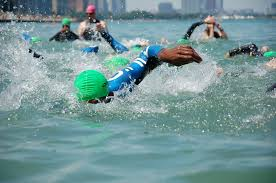 Alabama Wild Swimming images 7 top spots to swim outside around chicago jpg