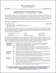 cfo resume samples pdf cfo resume samples pdf resume template using word 2007