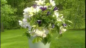video how to arrange with clematis varieties martha stewart