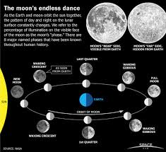 moon phases monthly lunar cycles infographic