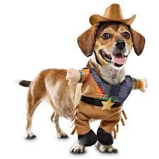 spirit of halloween promo code bootique cowboy illusion dog costume petco