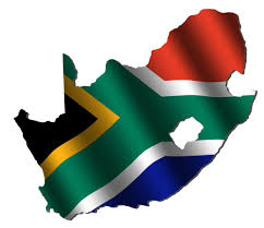 Pan Africanism Flag From Roots To Leaves Future Leadership In South Africa Warren