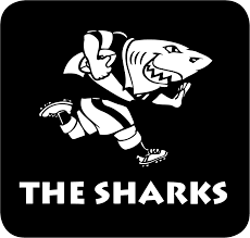 sharks 0 pres alternate logo diy iron on stickers pro12 rugby logo
