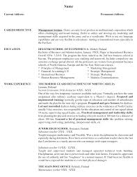 Sample Resume Objectives For Preschool Teachers by Objective For Resume Case Manager