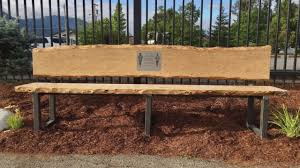 Field Bench Thieves Mar Memorial Bench For Teens Killed In Plane Crash Kezi News