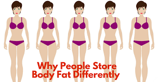 picture of heavy set women in a two piece bathing suit why people store fat in different parts of the body