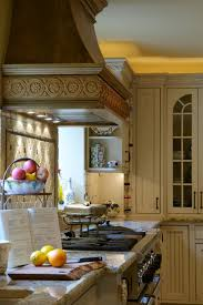 Design Kitchen Cabinet Charming Carving Kitchen Cabinet Design Kitchen Segomego Home