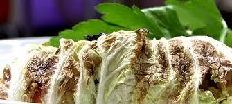 vegetarische küche vegetarische küche gefüllter chinakohl puls4