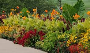 considerations to match plants to a site beyond impatiens and