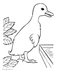 color duck tags color duck jazz coloring pages