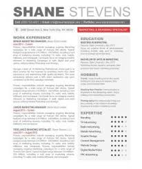 Resume Template With Picture Word Resume Examples Professional Resume Word Template Resume
