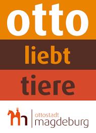 K Hen In Angebot Ottostadt Landeshauptstadt Magdeburg