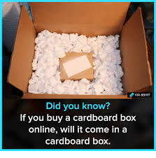Cardboard Box Meme - did you know if you buy a cardboard box online will it come in a