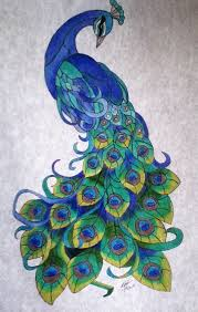 best 25 peacock drawing ideas on pinterest peacock art drawing