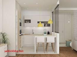 amenager petit salon avec cuisine ouverte amenager petit salon avec cuisine ouverte cool cuisine americaine
