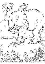99 ideas picture elephant colour emergingartspdx