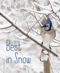 Photos Of Snow Best In Snow Book By April Pulley Sayre Official Publisher