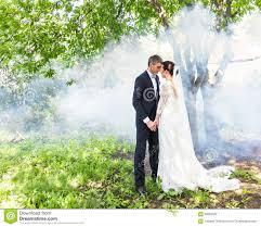 wedding backdrop garden wedding against the backdrop of a garden stock photo