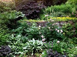 new ipad carolyn u0027s shade gardens