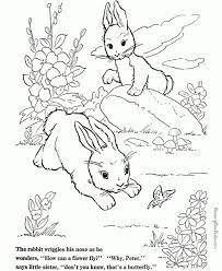 rabbits coloring pages 316 best animal coloring pages images on pinterest animal
