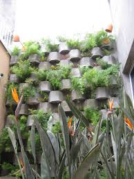 wall structure design landscape tropical with garden wall living