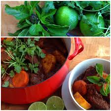 vietnamese style beef stew bo kho u2014 nourished kitchen