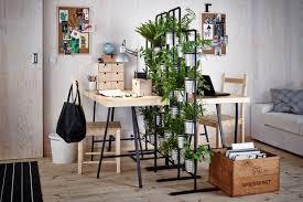 bureau à partager une haie végétale pour un bureau à partager