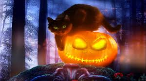 black cat halloween wallpaper tablet 7