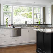clean dishwasher vinegar for a transitional kitchen with a