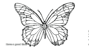 simple butterfly coloring pages large size of coloring book free