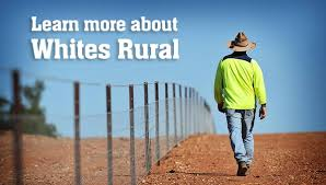 whites rural expect more