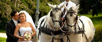 wedding venues in ocala fl weddings venues places to get married ocala marion county florida