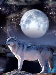 wolf moon picture nu venture llc