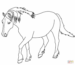printable realistic horse coloring pages redcabworcester