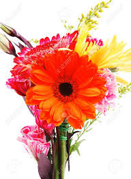 red and orange gerbera rose and gold mums flowers in bouquet