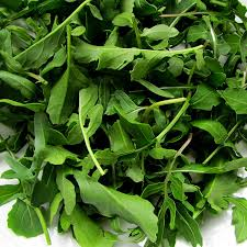 amazon com arugula seeds certified organic non gmo heirloom