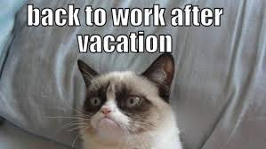 Get Back To Work Meme - the 10 back to work memes that sum up how we really feel stuff co nz