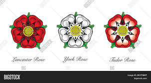 english rose emblems following the war of the roses the red rose