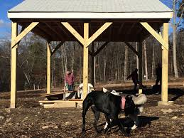 Home Depot Pro Desk Trumbull Dog Park Pavilion Keeps Dogs Shaded And Dry Slideshow