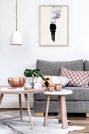 Scandinavian Area Rugs by Blush Pink Living Room Scandinavian With Plant Scandinavian