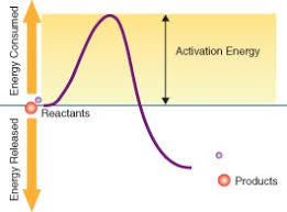 chemical reactions ck 12 foundation