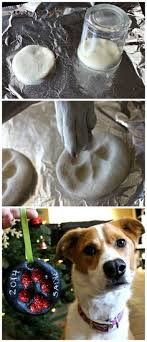 diy paw print wall walls and printing