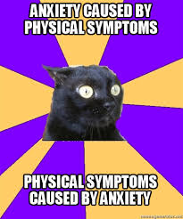 Kitty Meme Generator - i m not always sure which i m experiencing anxiety pinterest