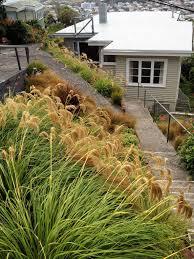 planting native grasses recent projects sarah norling landscapes