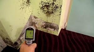 Schimmel Schlafzimmer Hinter Bett Schimmelpilzbeseitigung Neben Der Balkontür Und An Der Wand Youtube