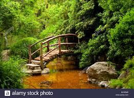Zilker Botanical Garden Garden Bridge Zilker Botanical Garden Stock Photo