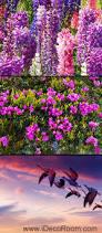 sunset mountain purple lavender flowers 00087 floor decals 3d sunset mountain purple lavender flowers 00087 floor decals 3d wallpaper wall mural stickers print art bathroom
