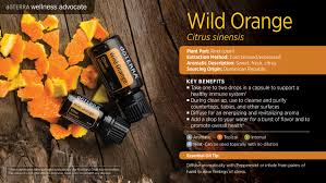 wild orange oil dōterra essential oils